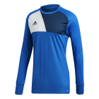 Assita 17 Goalkeeper Jersey - Front View