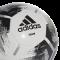 TEAM Ball -