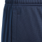 Tiro 17 Pants Youth -