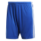 Tastigo 17 Shorts - Front View