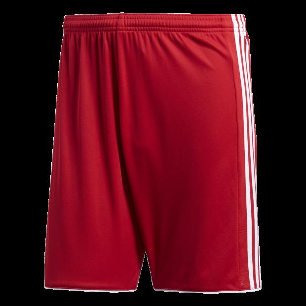 Tastigo 17 Shorts - Front View