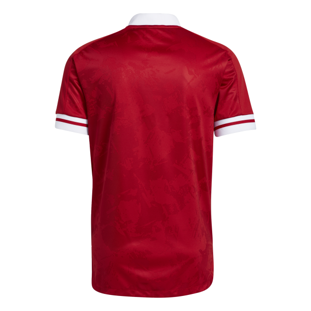 Condivo 20 Voetbalshirt - Back Center View