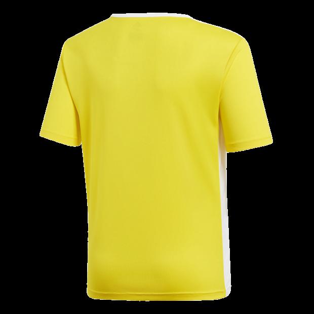Camiseta Entrada 18 - Back Center View