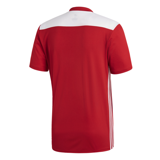 Regista 18 Jersey - Back Center View