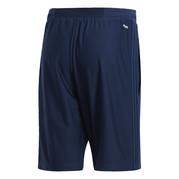 Tiro 17 Training Shorts - Back Center View