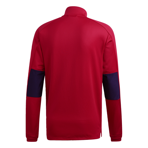 Condivo 18 Training Jacket - Back Center View