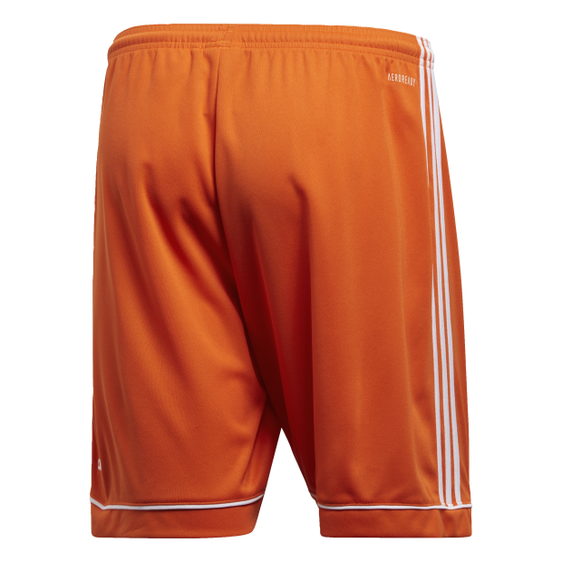Squadra 17 Shorts - Back Center View