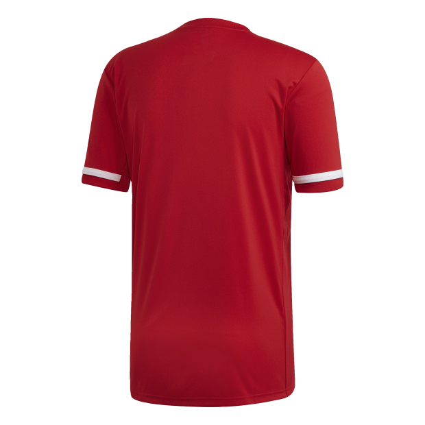 Maillot Team 19 Short Sleeve - Back Center View