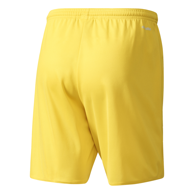 Parma 16 Shorts - Back View