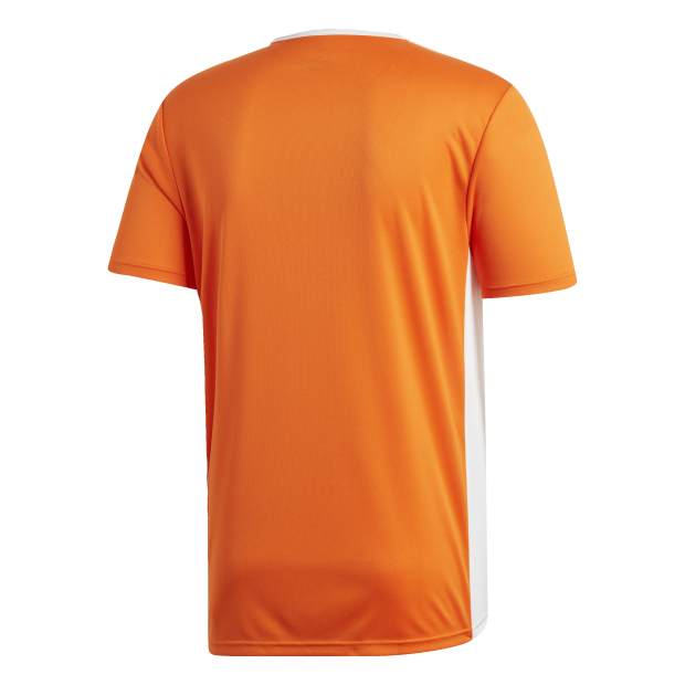 Entrada 18 Trikot - Back Center View
