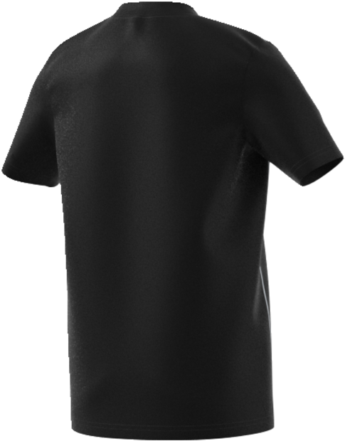 Camiseta Core 18 - Back View