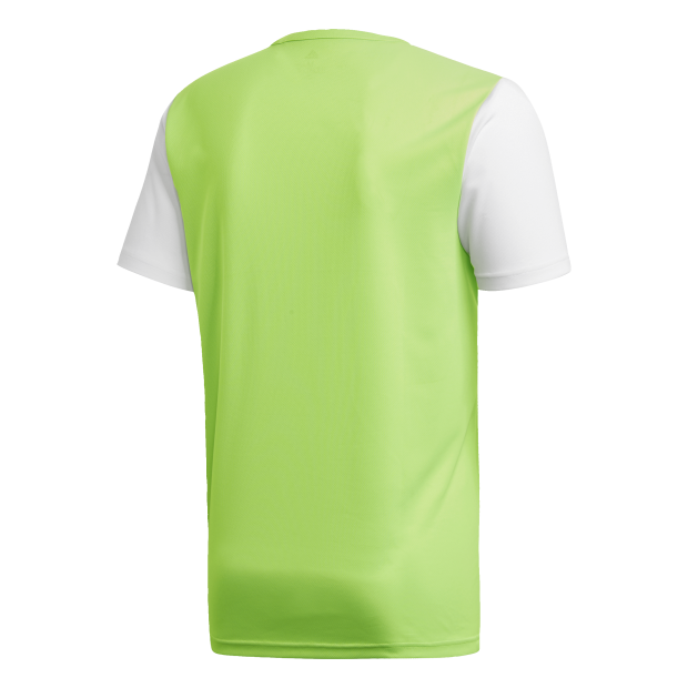 Estro 19 Trikot - Back Center View