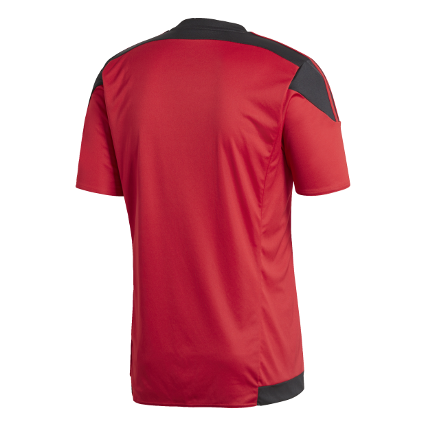 Striped 15 Jersey - Back Center View